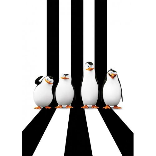 Фототапет Мадагаскар - Пингвини